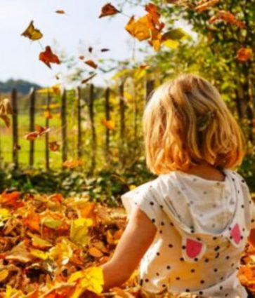 Stina e alergjive/ Ja si të mbroheni nga sëmundjet e vjeshtës