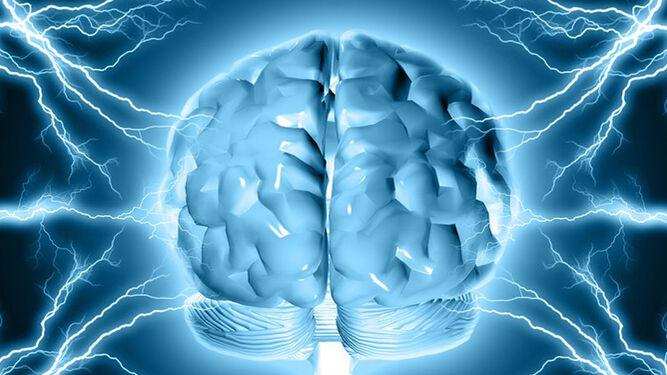 Epilepsia, çfarë është çrregullimi i trurit i karakterizuar nga kriza të përsëritura