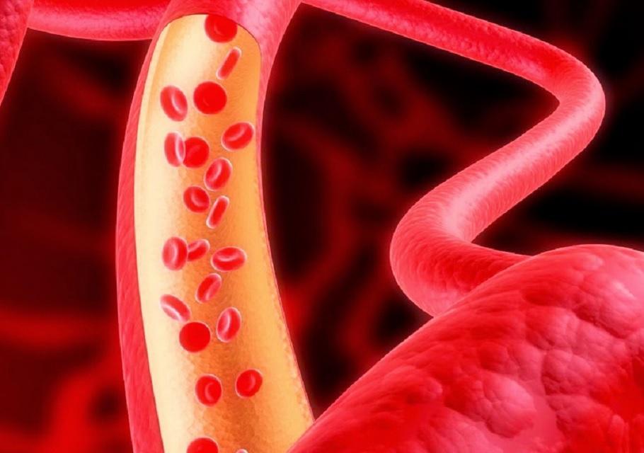 """""""Holluesit e gjakut"""", antiagreguesit dhe antikoagulantët"""