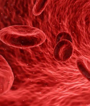 Humbja kronike e gjakut