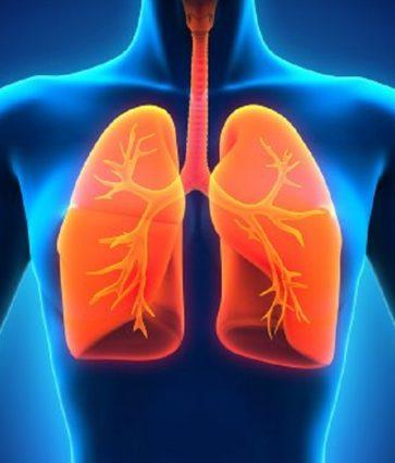 Frekuenca respiratore, vlerat normale dhe shkaqet kur ndryshon