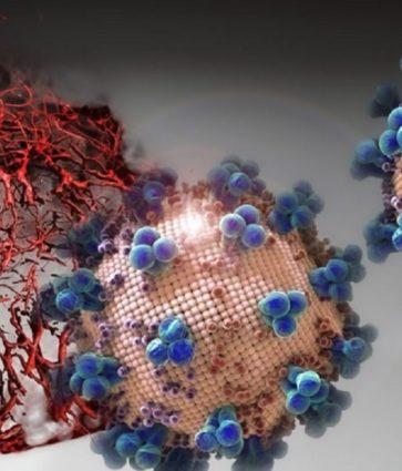 """""""Ka shpresë për këtë pandemi të tmerrshme"""", zbulimi i shkencëtarëve që bllokon """"portën hyrëse"""" të koronavirusit"""