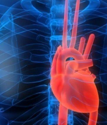 Patologjitë kardiovaskulare dhe COVID-19, çfarë duhet të kenë kujdes