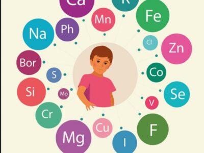 Mikroelementët në organizëm, roli jetik për metabolizmin