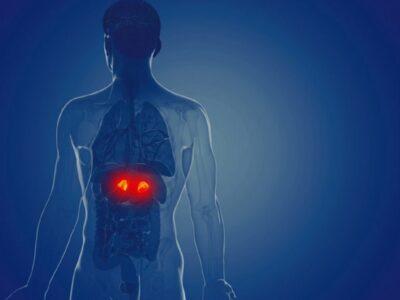 Sindroma Cushing, çfarë duhet të dimë? Shenjat, trajtimi dhe regjimi ushqimor