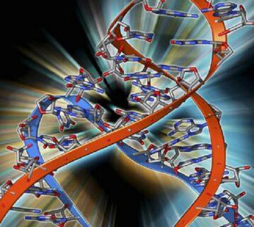 Çfarë është ARN e virusit?