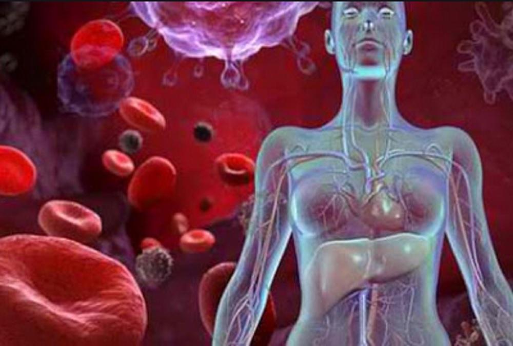 semundjet hemolitike